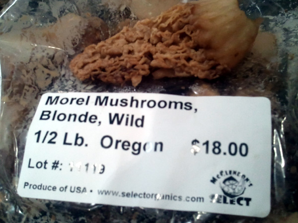 Half Pound of Morel Mushrooms