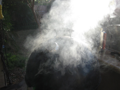 WSM Smoking