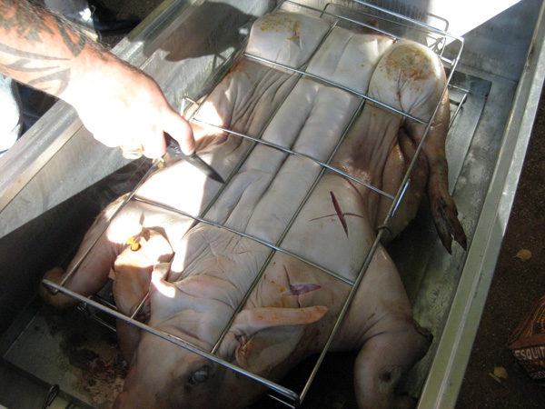 Cutting the skin of the pig