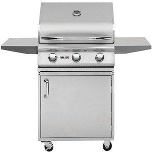 Delsol 25 Inch Natural Gas Grill on Cart